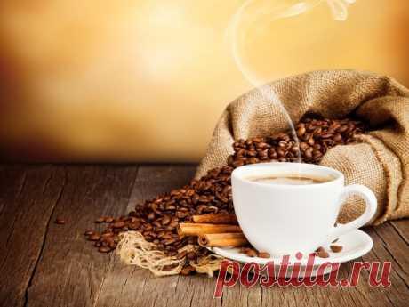 Полезный и интересный гид по кофе