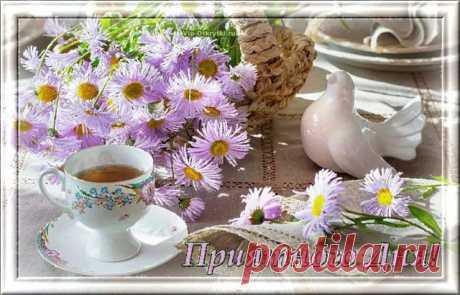 Приятного дня Хорошего дня, отличного настроения, светлых улыбок и в сердце огня, теплых объятий, удачи в делах. Крыльям успеха — широкий размах! Счастья, добра вам, любимым, в сей день! Пусть обойдут вас безделье и лень, пусть не расходятся с делом слова. Мирного неба желаю я вам! Будьте счастливы всегда!  *  *  *  *...