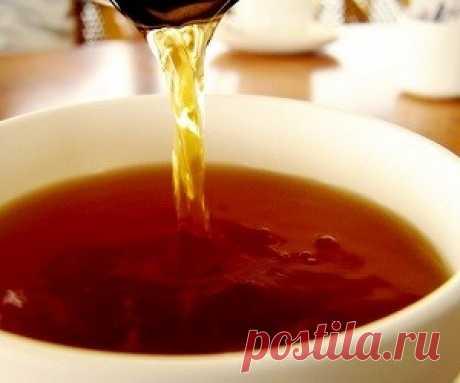 Чай из веток деревьев: полезные свойства и приготовление - health info