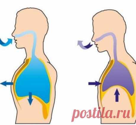 ГИПЕРТОНИЯ: лечебные упражнения доктора Евдокименко Эти упражнения — великолепный метод борьбы с повышенным давлением и аритмией.