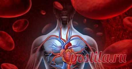 Чтобы проверить работу сердца, погрузите ладони в холодную воду на 30 секунд Сегодня мы будем диагностировать работу сердца. Простая, самостоятельно проведенная процедура поможет тебе узнать многое о состоянии здоровья. Перед тем как бежать к врачам широкой квалификации, сдава…