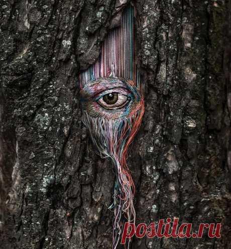 Украинская художница вышивает прямо на деревьях | MIAZAR | Яндекс Дзен
