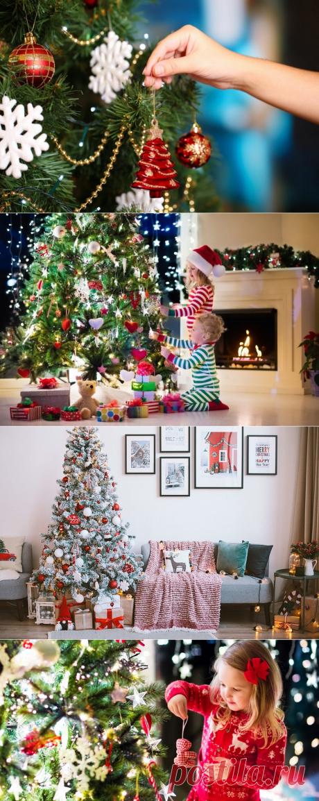 Почему на Новый год принято ставить и наряжать елку