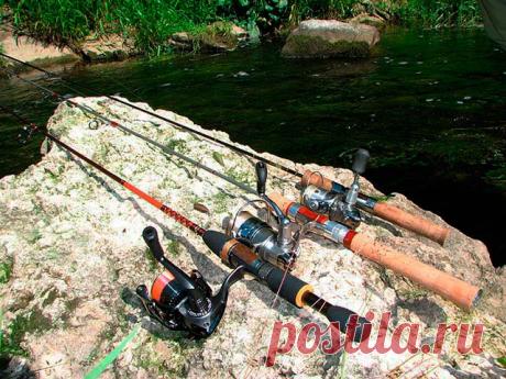 Ловля щуки. Советы по выбору спиннинга | Баркас | Охота и Рыбалка | Яндекс Дзен