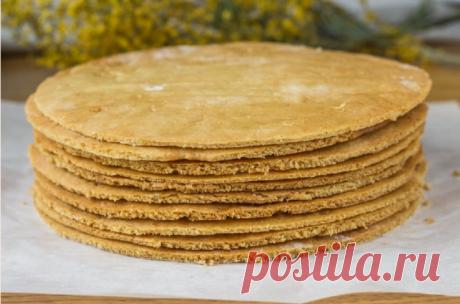 Медовые коржи: рецепты торта медовика, приготовление пропитки в домашних условиях