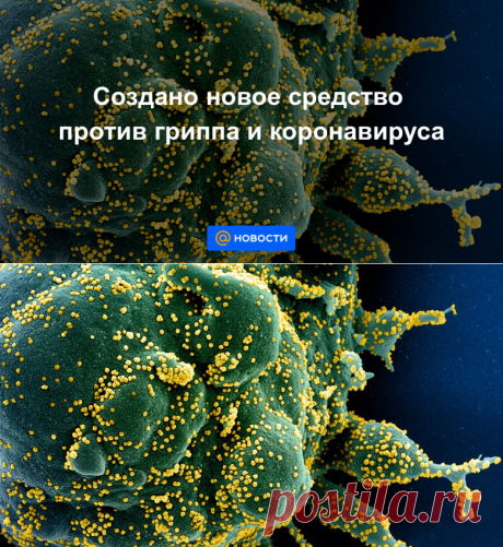 Создано новое средство против гриппа и коронавируса - Новости Mail.ru