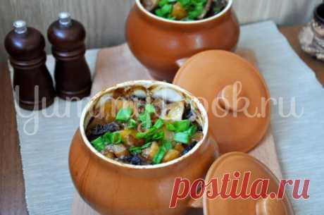 Картофель с грибами в горшочке - пошаговый рецепт с фото