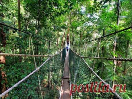 Самые страшные и опасные мосты планеты Земля