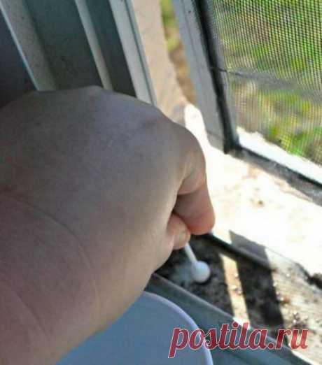 Как почистить оконные рамы? — Полезные советы