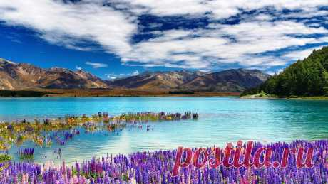 оз.Текапо.Нов.Зеландия