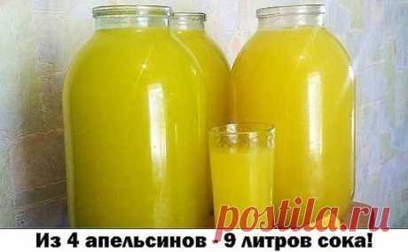 Из 4 апельсинов - 9 литров сока! Сок апельсиновый!!! 4 апельсина вымыть, обдать кипятком (чтобы снять воск и убрать горечь), насухо вытереть, положить на 2 часа в морозилку, а лучше на ночь. Порезать и пропустить через мясорубку. Залить получившуюся массу тремя литрами холодной кипяченой воды (я использую воду из фильтра), дать настояться около 10 минут. Процедить через дуршлаг (чтобы ушли крупные частицы), потом процедить через мелкое сито, или через марлю, сложенную в 5-6 слоев. Если цедить ср