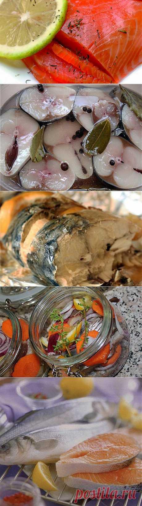 9 вкусных маринадов для рыбы | ЖЕНСКИЙ МИР