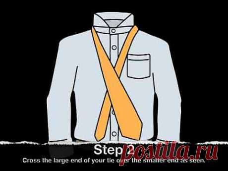 Как завязать галстук правильно | Видео уроки для всех