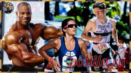 Возможно ли быстро накачать мышечную массу, 3 основных фактора | Записки немолодого ЗОЖника | Яндекс Дзен
