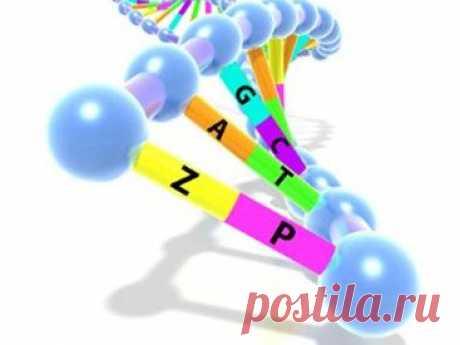 Биологи дополнили генетический алфавит двумя буквами