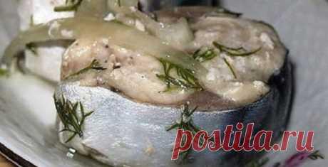 Сагудай из скумбрии    Сагудай из скумбрии — нежно-пряная закуска из рыбы, которая просто тает во рту. Нежный аромат укропа, легкая пряность — оторваться очень трудно, а точнее: невозможно! Это самый вкусный рецепт засол…