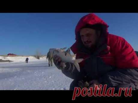 Рыбалка. Казахстан. Река Солянка. Река Барбастау. Fishing. Kazakhstan. - YouTube