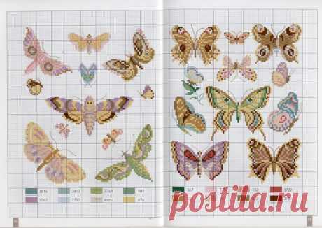 (6) Gallery.ru / Фото #5 - 23 - arine2208