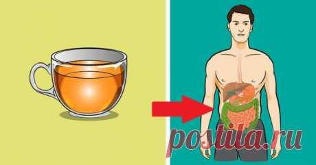 Las propiedades útiles del té