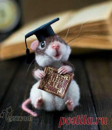 Очаровательные мышки из шерсти / Хорошая Мама!