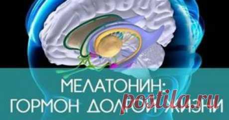 Мелатонин — причина долголетия. Способ поднять его уровень в организме ...