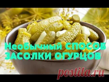 Необычный СПОСОБ засолки ОГУРЦОВ на зиму/Без стерилизации и уксуса. - YouTube