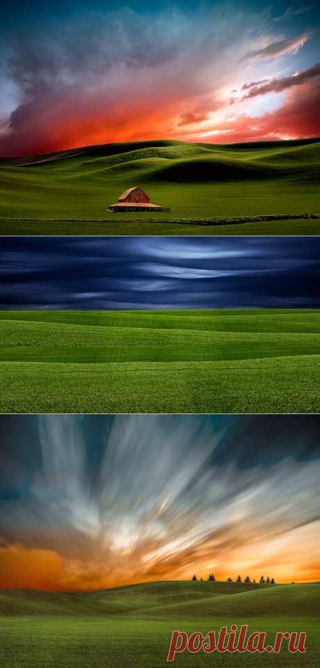 Лучшие фотографии со всего света - Сюрреалистичные пейзажи сельскохозяйственных полей