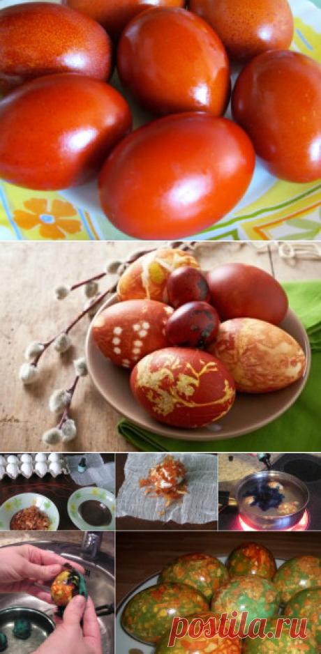 Como pintar los huevos a la Pascua por las manos en el pellejo de cebolla
