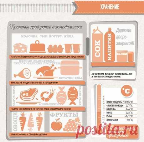 Шпаргалка для кухни: хранение продуктов в холодильнике.