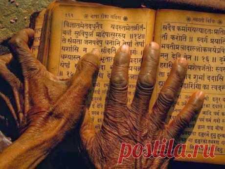 Советы от непальских мудрецов