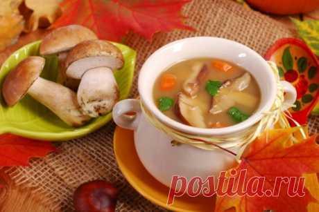 Сливочный суп с лесными грибами