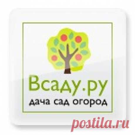 Всаду. ру