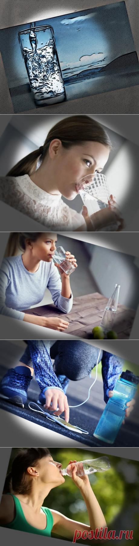 Мифы о питьевой воде | Полезные советы | Яндекс Дзен