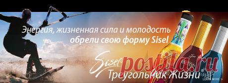 Sisel International - Home