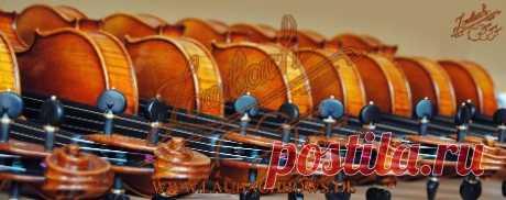Laubach Streichinstrumente und feine Bögen