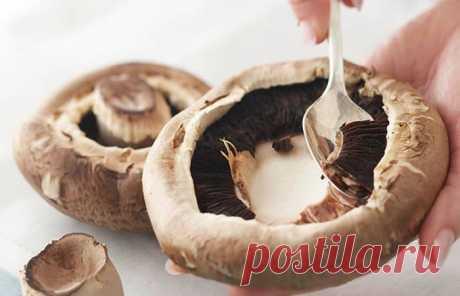 Ошибки при приготовлении грибов, которые делают их вкус резиновым Грибы требуют внимательного подхода при готовке. Грибы — изысканный и вкусный компонент для многих блюд. Он имеет тонкий ореховый вкус, что даже без приправ делает еду более интересной, необычной и...
