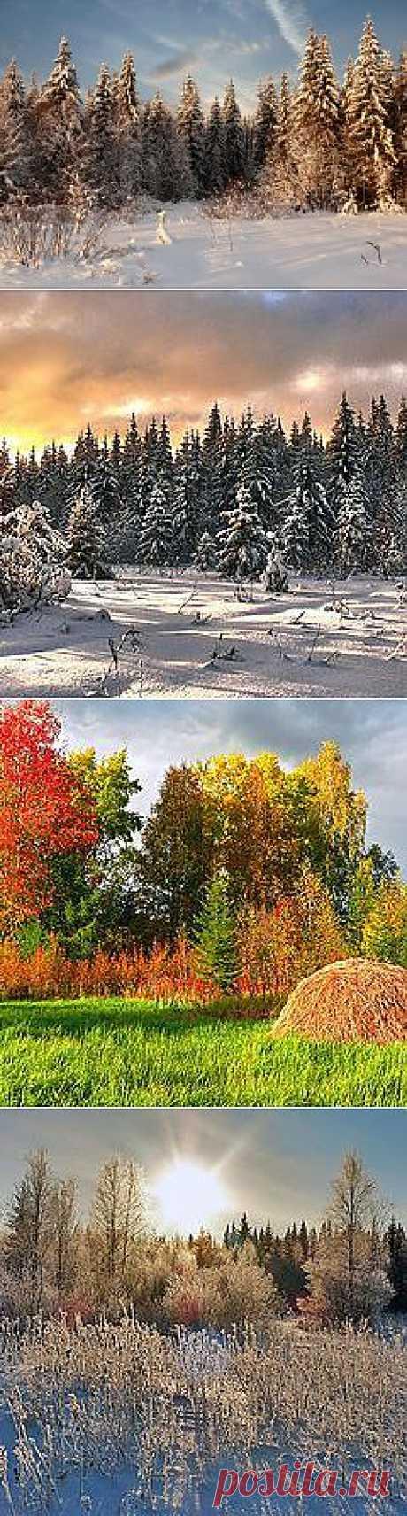 Фото солнечный день - фотограф Евгений Кошелев - пейзаж, природа - ФотоФорум.ру