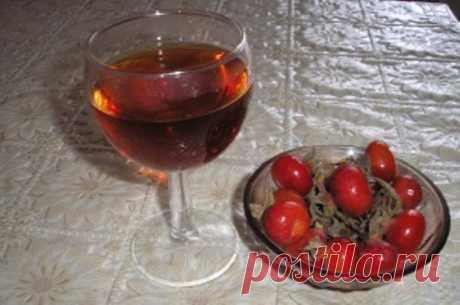 Домашнее вино из шиповника   Энциклопедия ликеров