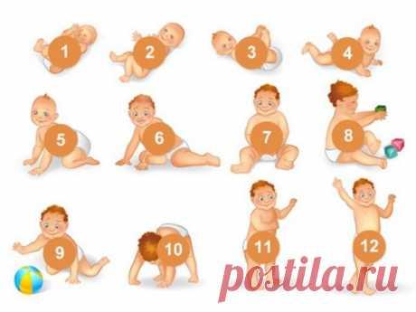 Развитие ребенка по МЕСЯЦАМ до 1 года (мальчики, девочки): что должен уметь , календарь развития   Семья и мама