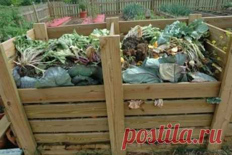 КАК СДЕЛАТЬ КОМПОСТ НА ДАЧЕ Нет лучшего пути помочь окружающей среде и улучшить здоровье своих растений, чем организовать правильный компост. Проще говоря, компост — это лучший почвоулучшитель для вашего сада и огорода. И так, как сделать компост на даче: 10 советов 1. Выберите правильный компостер для ваших нужд. Маленький опрокидывающийся компостер — идеальный вариант для тех, кто экономит место, однако ряд из двух-трех ящиков позволит получать компост на разных этапах его приготовления.