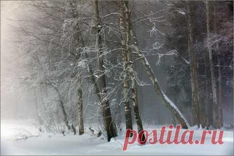 Фотография *** из раздела пейзаж №6888704 - фото.сайт - Photosight.ru