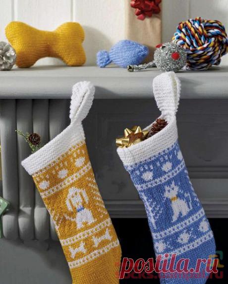 Подарочные носки для братьев наших меньших | ВЯЗАНЫЕ НОСКИ