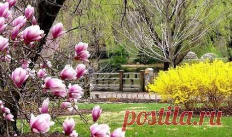 Наступает апрель – чудесный весенний месяц, месяц тепла и расцвета. С весенней теплотой приходит детское чувство свободы, свежести, хочется найти применение своей энергии. Апрель в этом году - один из самых хороших месяцев.