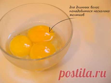 Яичный шампунь: видео-инструкция как сделать своими руками в домашних условиях, рецепт, фото и цена