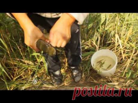 Щука на поплавочку - YouTube
