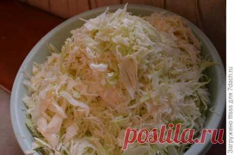 Старинное русское блюдо: щи суточные