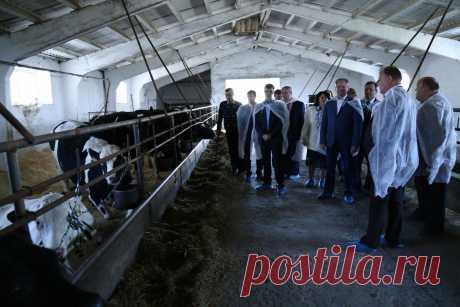 Алексей Кокорин отметил высокую культуру сельхозпроизводства ООО «Агрокомплекс «Знамя» в Куртамышском районе | Правительство Курганской области