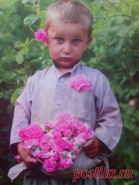 Александр Кукоба