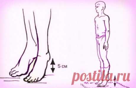 Зачем нужно стучать пятками о пол?Узнав причину, вы тоже начнете так делать! - Журнал Советов В СССР было очень много простых но гениальных решений, однако не пропускаемых официальной медициной. Такая чудодейственная виброгимнастика, предложенная академиком Микулиным, способна избавлять мышцы ног от избытка молочной кислоты, улучшать венозное кровообращение. Академик Орбели, перенесший инфаркт, был очень благодарен Микулину за эту виброгимнастику, которой он вылечил свое с...