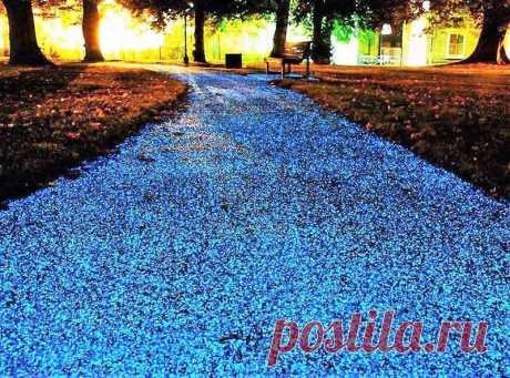 "Garden shine: how to make the shining path in a garden\"" the Female World"